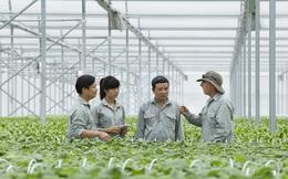 Vingroup chi 300 tỷ cho nông nghiệp