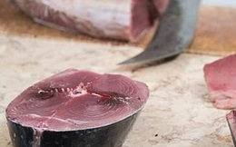 Ăn hải sản rất tốt nhưng bạn nên cẩn thận với những loại có thể gây ngộ độc cao