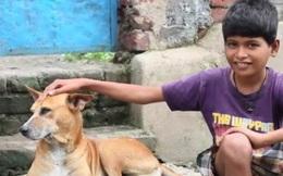 Kỳ lạ sở thích của cậu bé 10 tuổi suốt ngày lang thang tìm chó cái để bú sữa