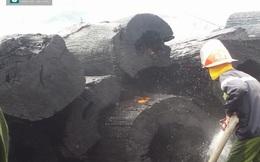 Hàng trăm cây gỗ samu quý bất ngờ cháy thành than ở bãi tập kết