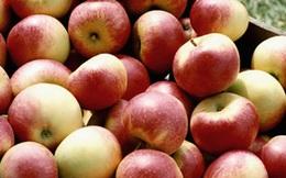 Cách chọn mua táo cũng có thể biết khả năng làm giàu của bạn