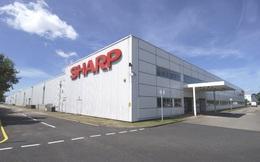 """Chủ tịch Sharp từ chức sau khi đưa công ty """"lên đỉnh"""""""