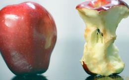 Chúng ta được dạy là phải bỏ lõi quả táo khi ăn vì có độc, sự thật thế nào?