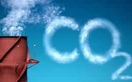 """""""Gửi tình yêu vào đất"""" – Giải pháp vàng giải quyết bài toán khí thải CO2"""