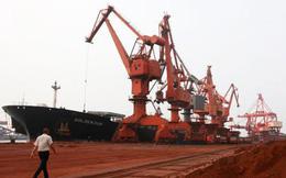 Việt Nam nhập khẩu… đất