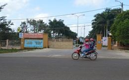 50 giáo viên trường dạy lái xe xài bằng giả