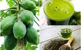 Đu đủ xanh kết hợp với lá trà: Bài thuốc chữa căn bệnh đàn ông thành đạt hay mắc