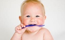 Nên nhai thức ăn mấy lần trước khi nuốt: Cần cho tất cả mọi người, đặc biệt là trẻ em