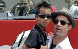 Brad Pitt được minh oan về cáo buộc bạo hành con