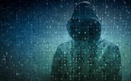 FBI đã bắt giữ hacker này nhưng ngay lập tức thả anh ấy ra và tôn vinh như người hùng