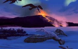 """Phát hiện loài chim 90 triệu năm tuổi có thể tiên đoán """"vận mệnh"""" Trái Đất"""