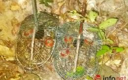 Đà Nẵng: Bắt quả tang đối tượng đặt bẫy động vật hoang dã trong rừng Sơn Trà
