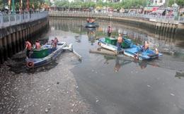 Lắp vòi bơm, máy quạt giúp cá sống ở kênh Nhiêu Lộc