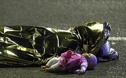 Một bức ảnh bóp nghẹt trái tim của triệu người trong vụ khủng bố Pháp