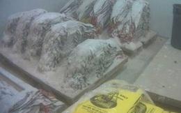 Tội ác tàn độc đằng sau những chiếc túi da sang chảnh được bán với giá cắt cổ