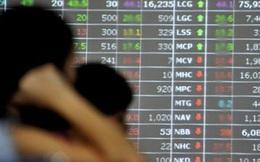 Dùng 26 tài khoản làm giá cổ phiếu, một nhà đầu tư bị phạt 1 tỷ