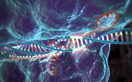 Tìm hiểu về CRISPR - công nghệ chỉnh sửa gen đột phá mà Trung Quốc vừa mới vượt mặt Mỹ