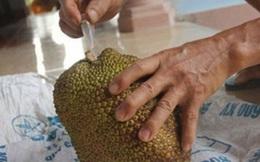 Mẹo phân biệt hoa quả chín cây hay chín thuốc