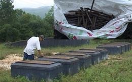Hàng loạt ngôi mộ bị đóng 12 chiếc đinh vô cùng khó hiểu