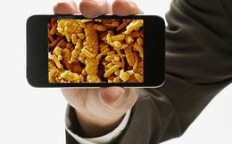 Đừng mang điện thoại vào nhà vệ sinh nếu bạn không muốn lãnh hậu quả tồi tệ này