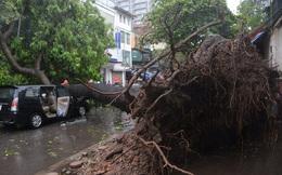 """Cảnh tượng khủng khiếp: Hàng loạt ô tô, xe máy """"thất thủ"""" trước bão số 1"""
