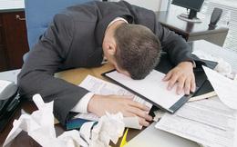Nghiên cứu chứng minh, đi làm nhiều không hẳn là hiệu quả