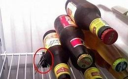 Có tủ lạnh mà không biết tận dụng món đồ này, e rằng bạn chưa được thông thái cho lắm