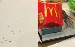 Phát hiện giun còn sống trong gói đồ ăn McDonald tại Singapore