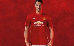 Tiền bán áo của Ibra 1 tuần gần đủ giúp Man United mua Pogba