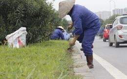 ÔNG PHẠM SỸ LIÊM, PHÓ CHỦ TỊCH TỔNG HỘI XÂY DỰNG VN: Hà Nội: Lãng phí vì trồng cây không phù hợp