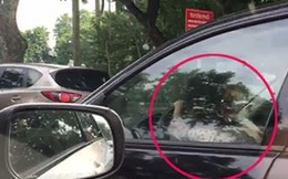 CLIP: Bé gái chễm chệ lái xe biển xanh đi giữa trung tâm Hà Nội