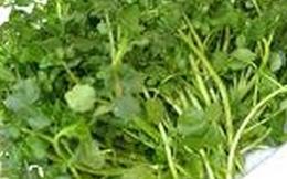 Giật mình với những loại rau, thịt ăn hàng ngày khiến sán làm tổ trong cơ thể