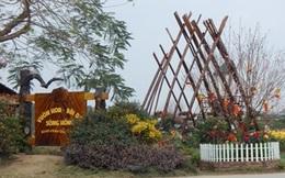 Hà Nội chỉ đạo xử lý nghiêm vi phạm đất đai ở quận Tây Hồ