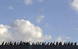 Người Cuba ký lời thề bảo vệ cách mạng với ông Fidel