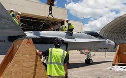 """Chờ F-35, Thủy quân lục chiến Mỹ phải khôi phục """"Ong bắp cày"""" đã loại biên"""