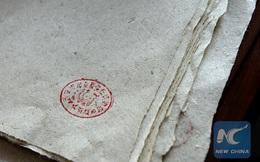 Thầy giáo Trung Quốc phát minh ra cách làm giấy từ phân gấu trúc dựa theo phương pháp cổ từ 2.000 năm trước