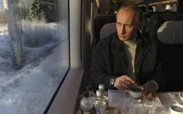 Việc Putin nhất định sẽ làm sau khi rời khỏi chính trường