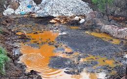 Vật nuôi, cây trồng chết ồ ạt bên bãi rác nghi đổ hóa chất