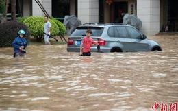 Đường biến thành sông, cây cối đổ rạp sau đợt đổ bộ của bão Sarika