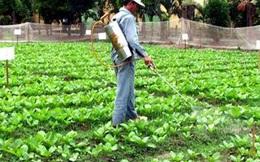 """Thực phẩm """"bẩn"""": Ngưỡng nào cho người nông dân Việt Nam?"""