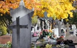 Khách bàng hoàng vì giữa đám tang... bật phim Sex