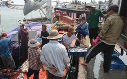 Quảng Trị: Hơn 114 tỉ đồng bồi thường cho dân vùng biển