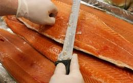 """Đừng vội tẩy chay cá hồi nuôi vì """"độc hại nhất thế giới"""", các mẹ nên biết sự thật này"""