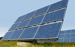Tập đoàn Mỹ khảo sát đầu tư điện mặt trời ở Bình Thuận