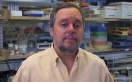 """Một nhà khoa học Harvard vừa nhận được giải thưởng 3 triệu USD vì khám phá ra """"trí tuệ của tế bào"""""""