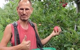 7 bằng chứng cho thấy Steve Jobs kì quặc tới mức nào
