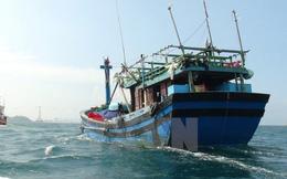 """Tàu cá ngư dân Quảng Ngãi lại bị """"tàu lạ"""" rượt đuổi, đâm vỡ"""