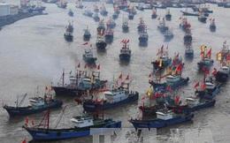 Bị truy quét, tàu cá Trung Quốc rút khỏi vùng biển liên Triều