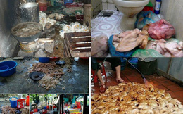 Che mặt người sản xuất thực phẩm bẩn: Có đúng luật?