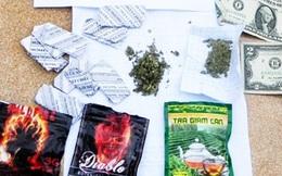 Các chất gây nghiện shisha, cỏ Mỹ tràn về xứ Huế